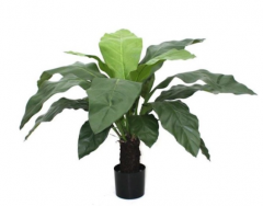 Vase the World Anthurium Jungle King 100 cm