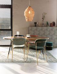 MD Interior eetkamerstoel Jolien met armleuning licht groen / goud - set van 2