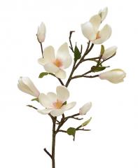 Vase the World  kunst Magnolia 80 cm